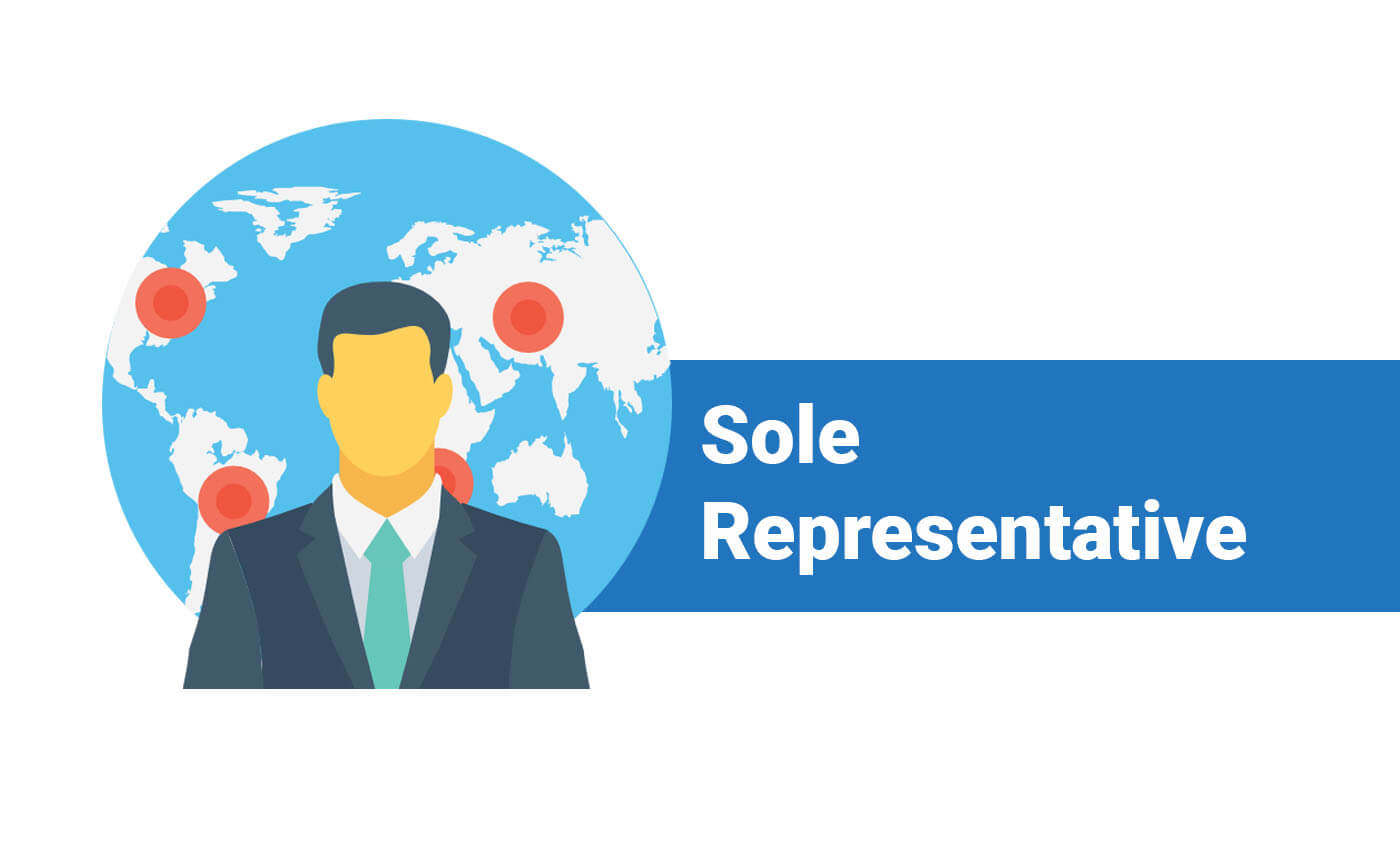 Sole Representative Visa